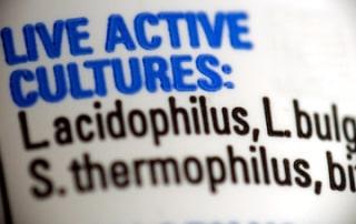 probiotic food ingredient label